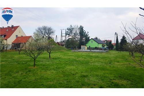 Re max plus opole opolskie ihr immobilienmakler for Immobilienmakler verkauf